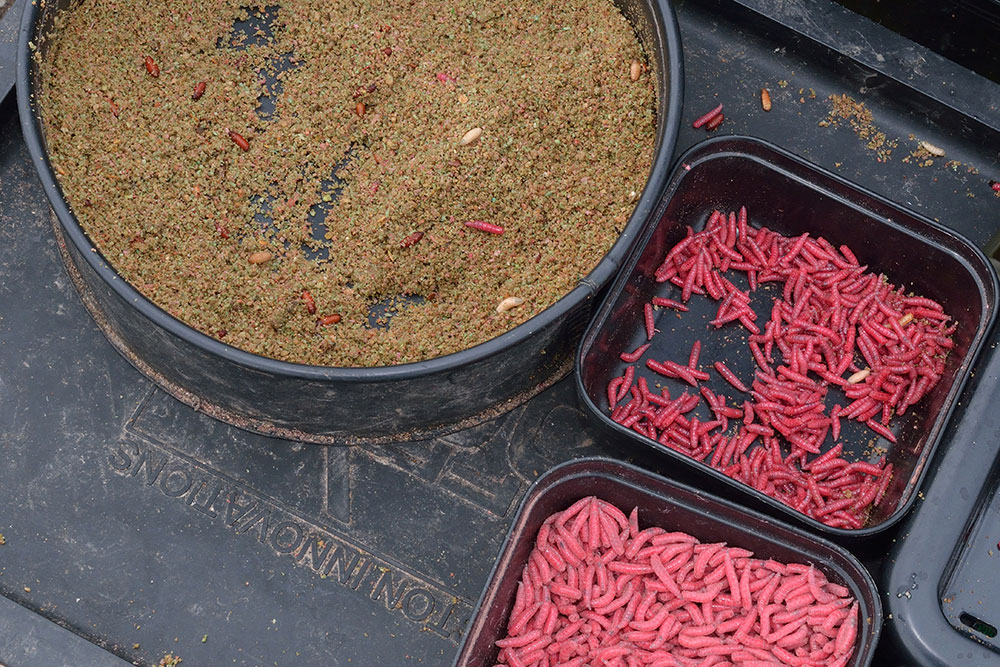 Feeder Fishing Success for Colin Harvey