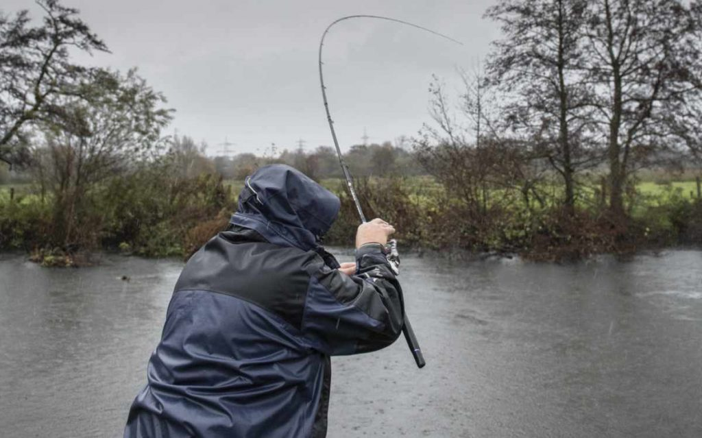 Cadence Fishing Specimen Rods