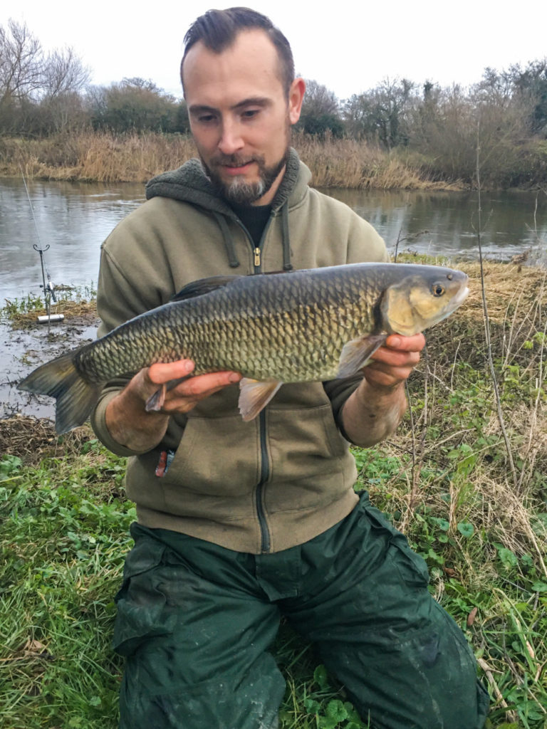 Fishing the river stour for chub